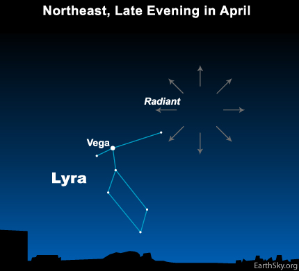 Radiant point of the Lyrid meteor shower