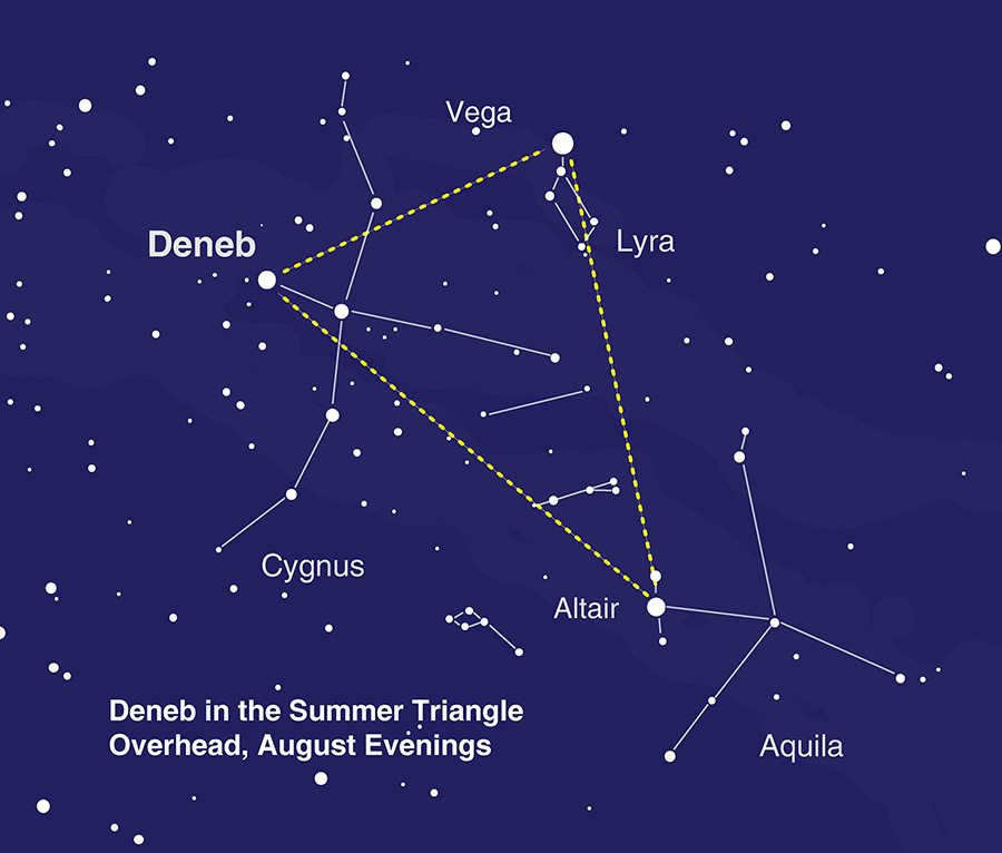 sky chart showing the location of Deneb in the Summer Triangle asterism