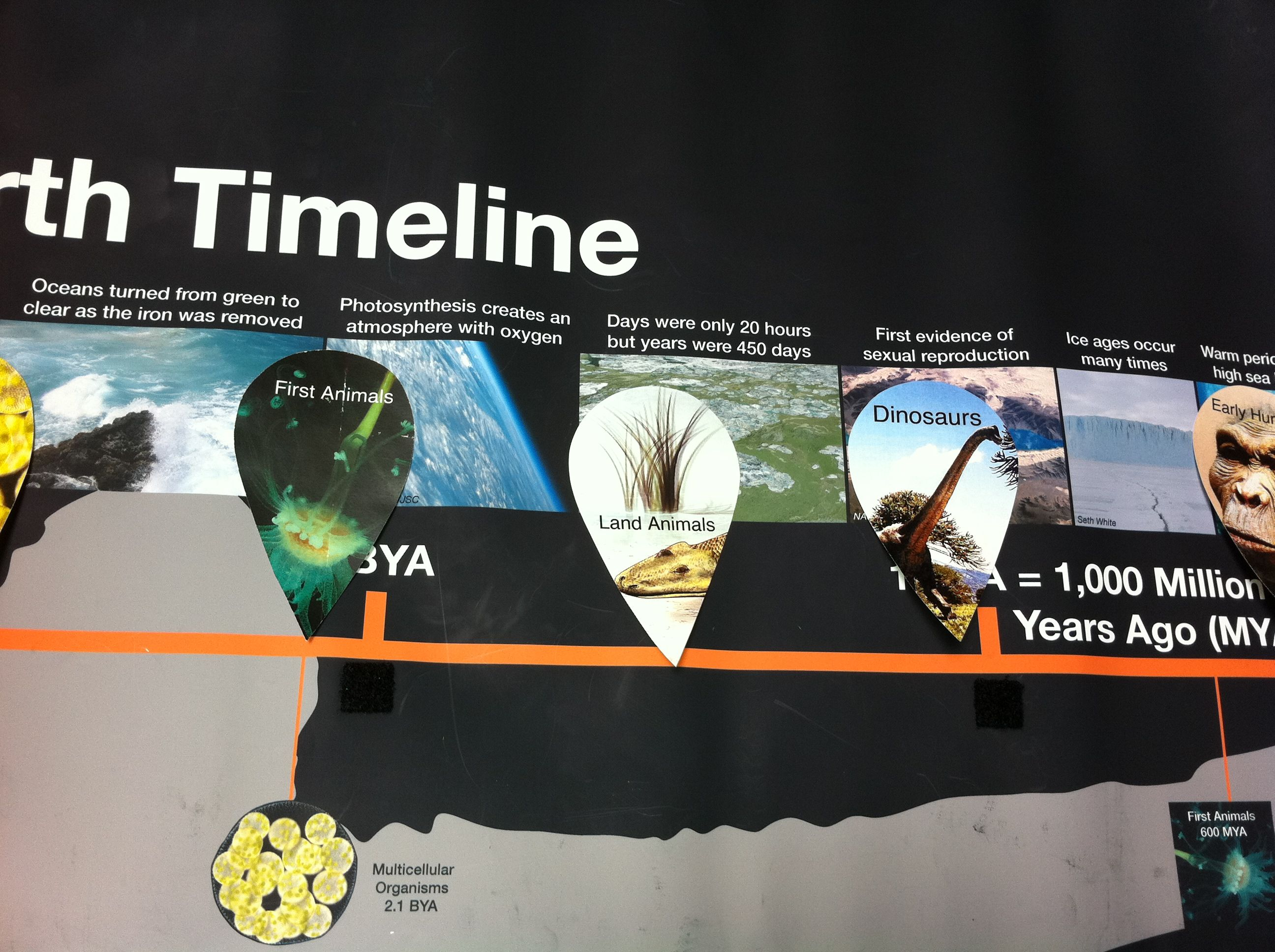 Banner: Earth Timeline Activity and Watery Worlds