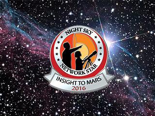 Image of the 2016 NSN award pins