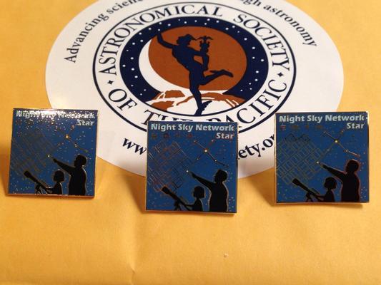 NSN Award pins ready to be shipped
